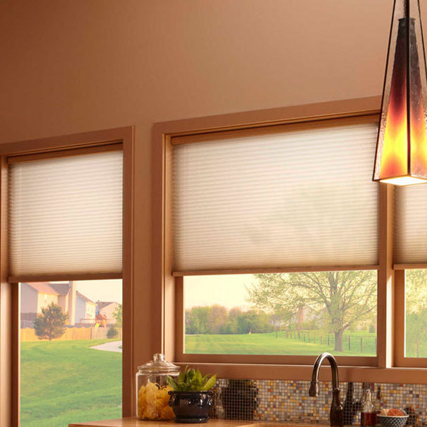 Lutron Lighting Shades